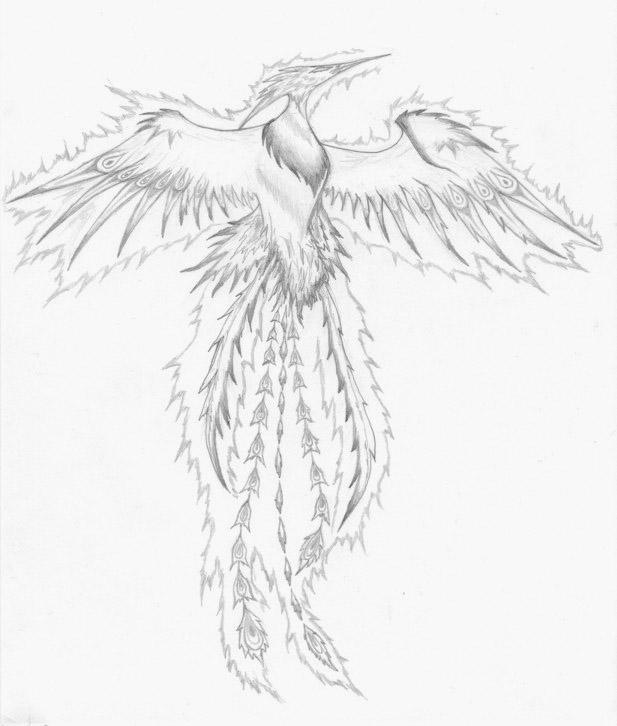 Dibujos para colorear del ave fenix - Imagui